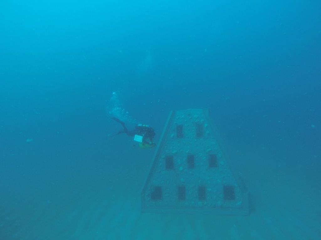 navarre beach reef